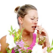 Йога при аллергии на растения: профилактика и лечение поллиноза.