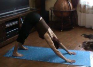Асаны йоги для поднятия иммунитета.1. Поза Собаки мордой вниз (Адхо Мукха Шванасана)