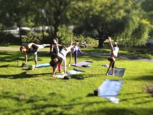 Йога в парках Москвы для здоровья и красоты. Индивидуальные консультации