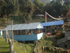 Активный отдых в горах 2016 и семинар по йоге: Непал, Марди-Химал, Forest Camp