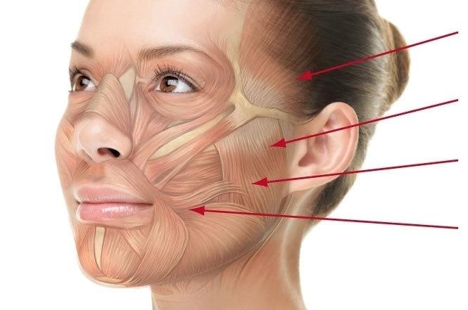 Как расслабить мышцы лица методами йогатерапии?