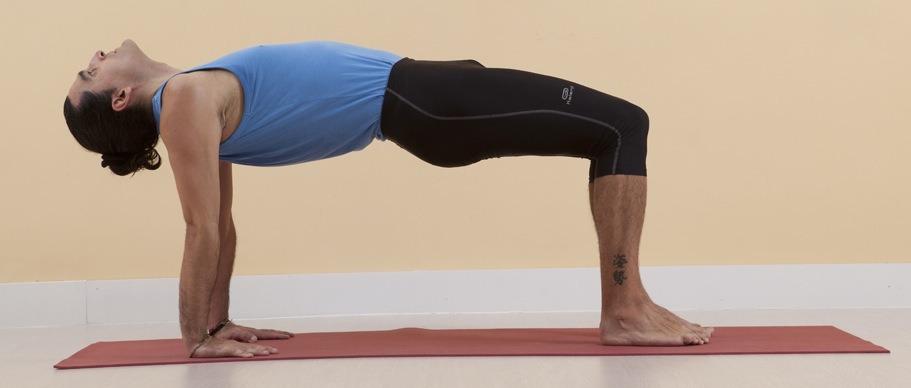 Упражнения для растяжки спины и позвоночника: Ардха Пурвоттанасана