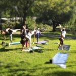 Йога для здоровья и фигуры в парках Москвы