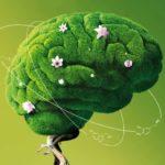 Лекция «Как немедикаментозно поддерживать высокий уровень гормонов молодости и здоровья вне зависимости от возраста?»